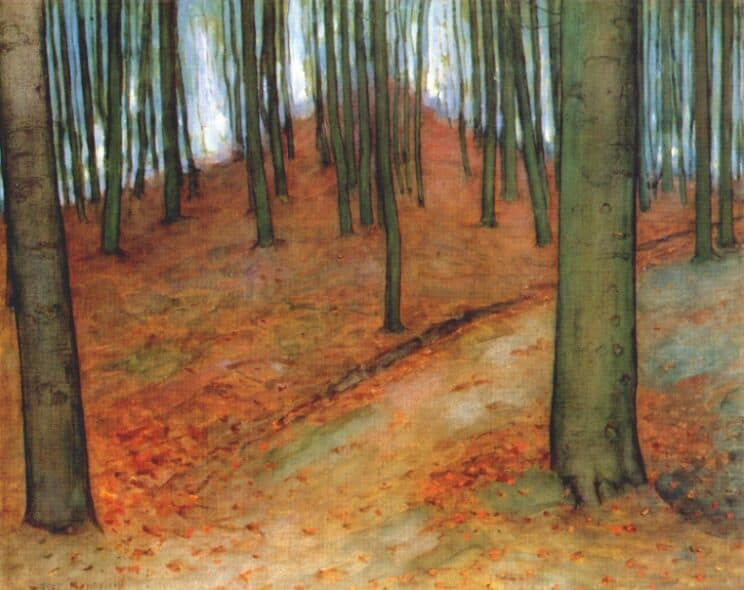 Wood with Beech Trees