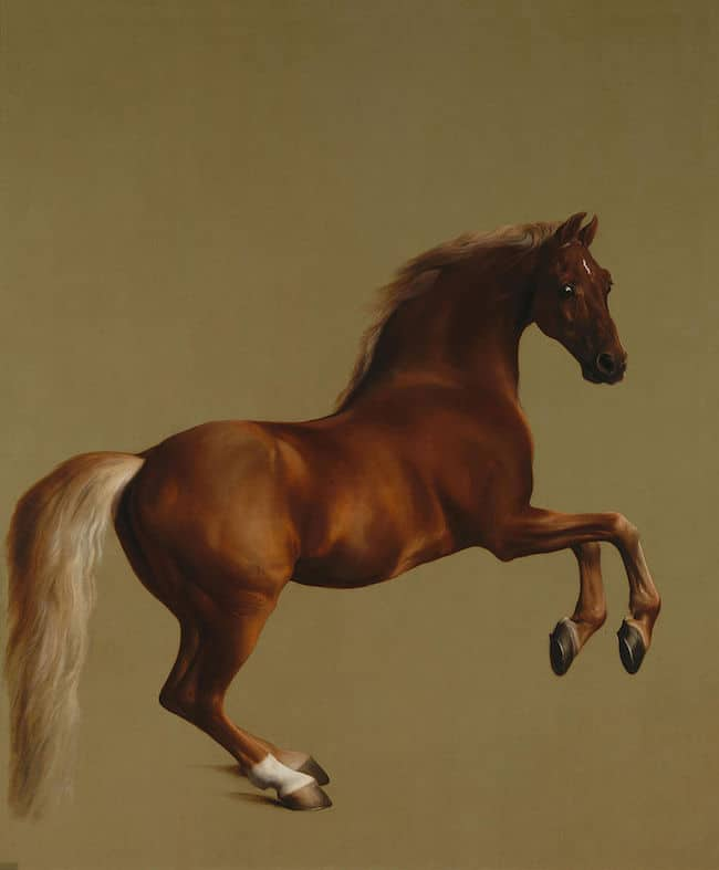 George Stubbs, Whistlejacket, 1762George Stubbs, Whistlejacket, 1762