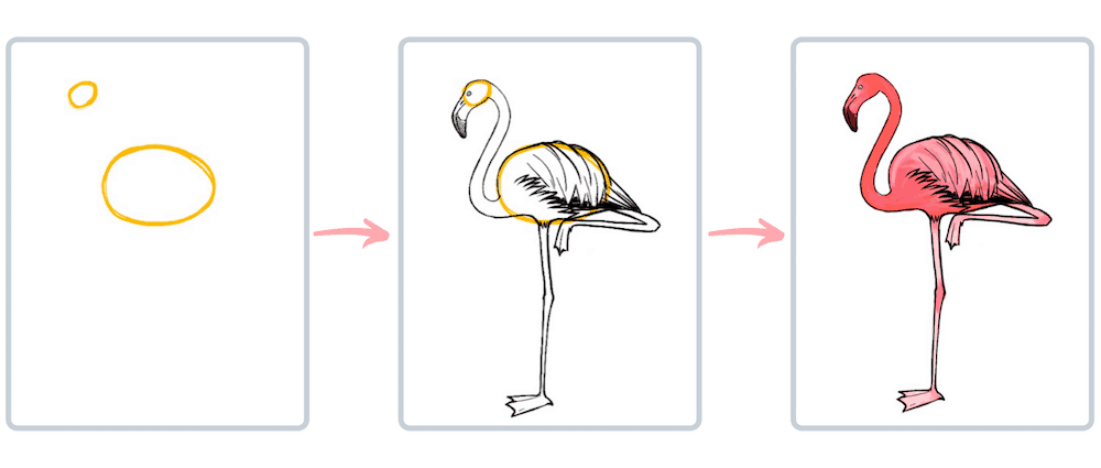 Flamingo Vögel malen Progression