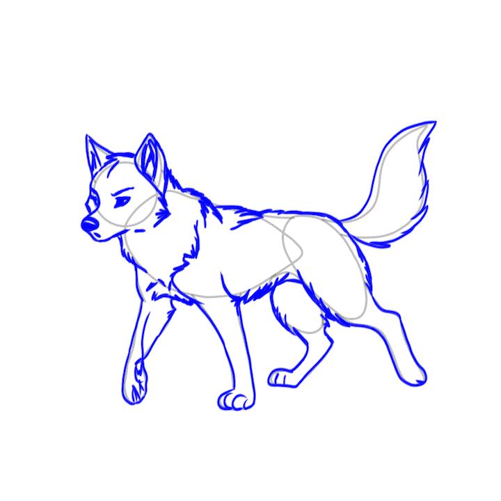 Fuchs zeichnen 5